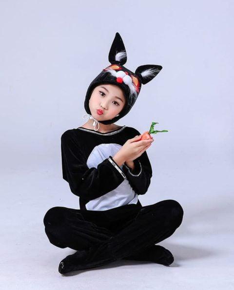 Bunny Costumes Kindergarten singapore