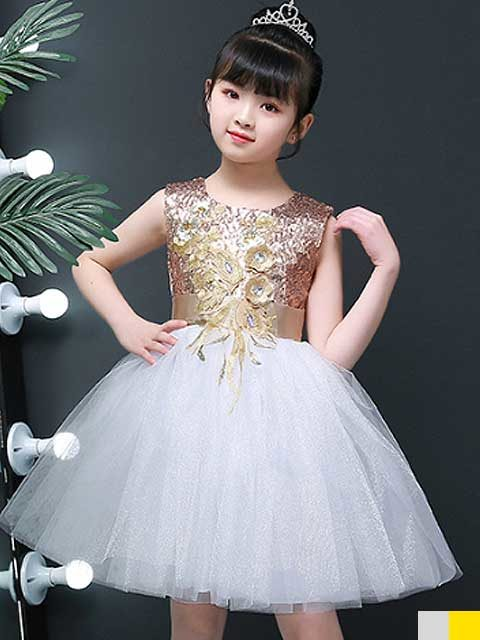 Girls Princess Dresses Costume Singapore