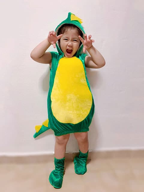 Green dragon Costume for children singapore