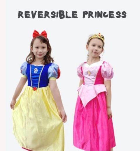 Reversible Snow White & Aurora