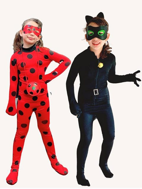 Lady Bug and Cat Noir costume