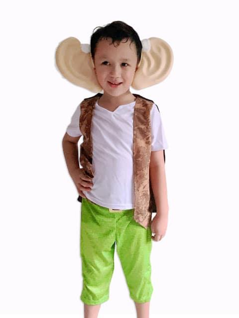 The B.F.G Fantasy adventure film theme costume