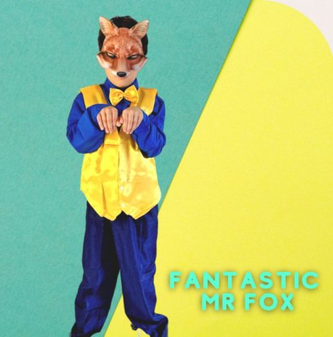 Fantastic Mr. Fox, famous movie characters costume