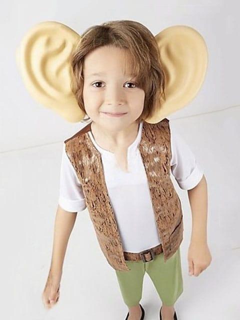 The BFG Roald Dah costume